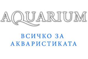 Aquarium.bg – всичко за акваристиката